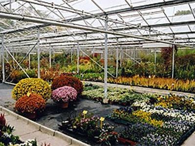 Horticulture - Les Floralies Mosanes : Parcs et Jardins