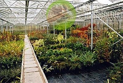 Floralies Mosanes - Horticulture
